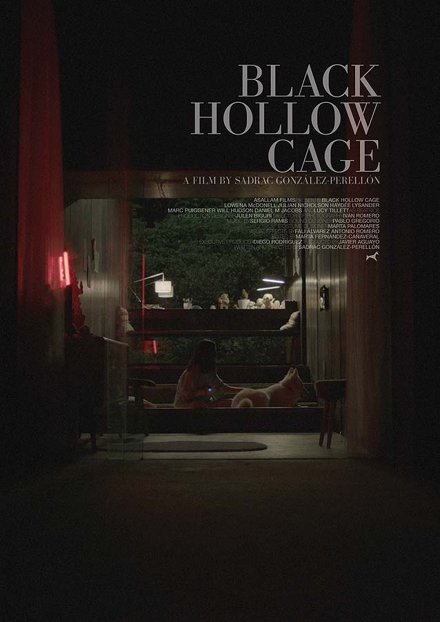 Poster for Black Hollow Cage